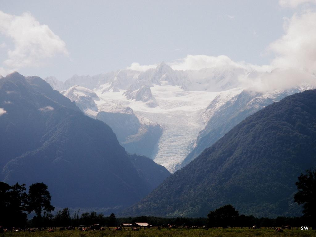 a few pics from that last big trip: Soaking it in at Fox Glacier II