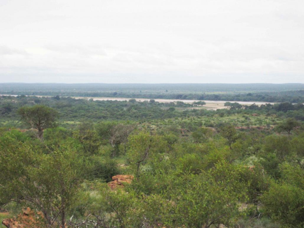 Rain in Mapungubwe
