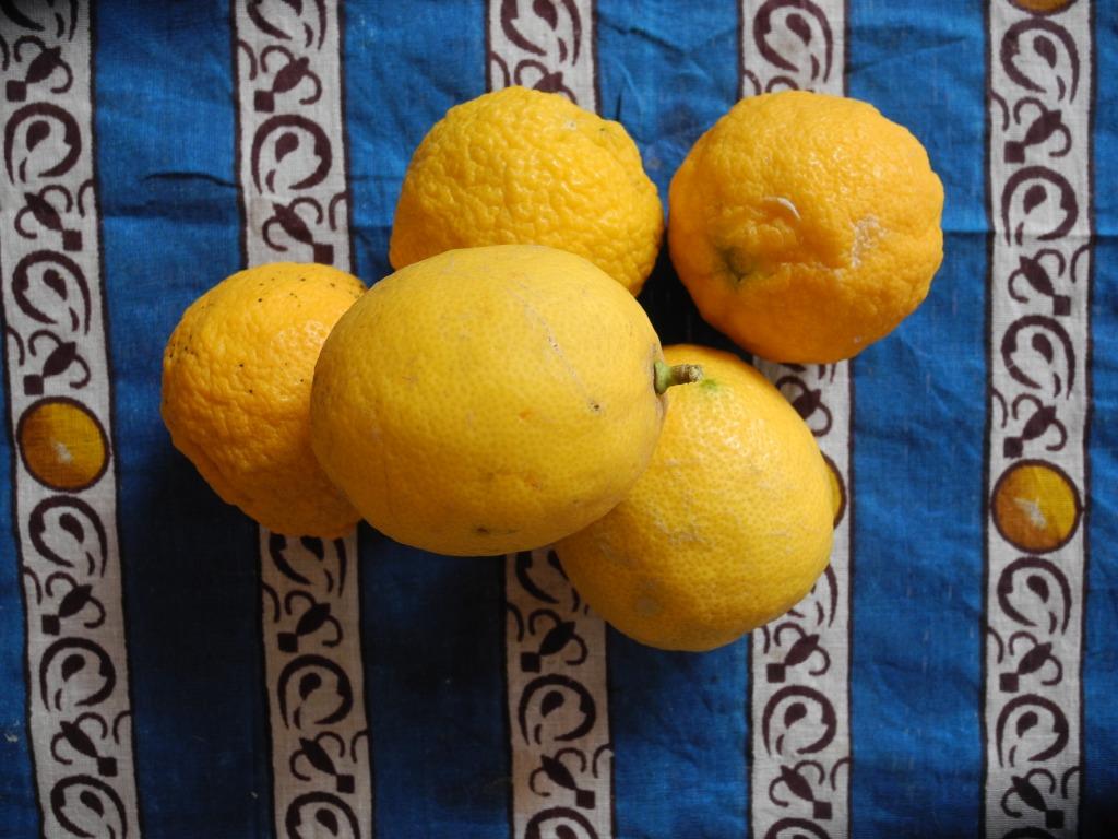 if life gives you lemons…
